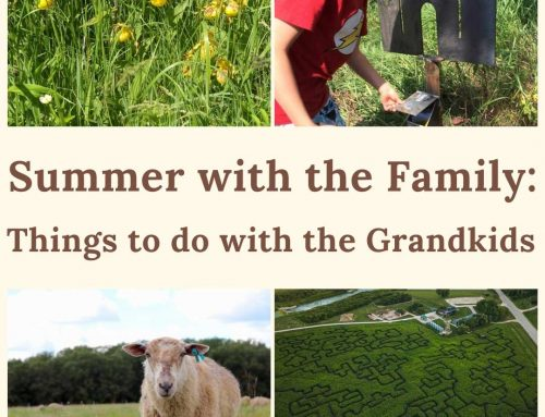 Summer with the Family: Things to do with the Grandkids