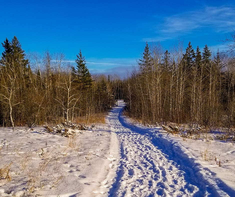 Groomed winter trail at Blueberry Rock Trail