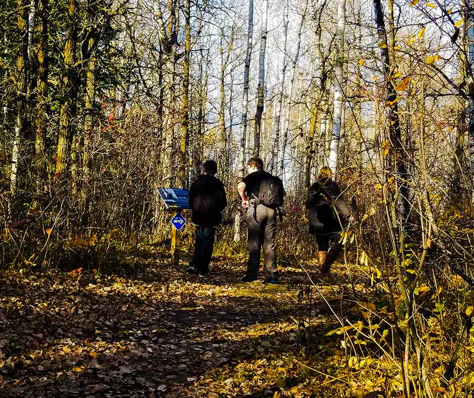 Fall hike at Blueberry Rock Trail