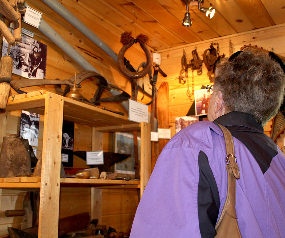 Visitor looking at old forestry tools