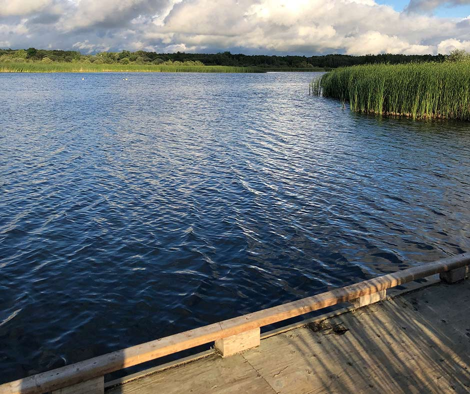 Dock for fishing at the Lac du Bonnet Wildlife Ponds