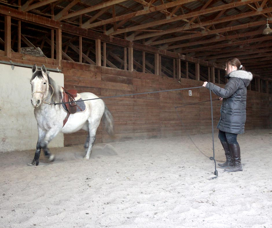 Adult riding lessons are available at Ridge Creek Ranch